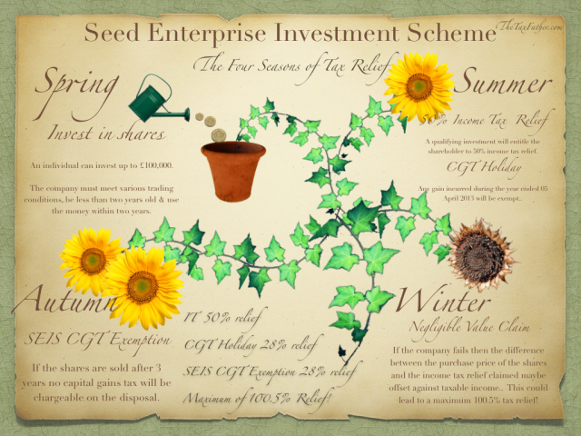 Seed Enterprise Investment Scheme